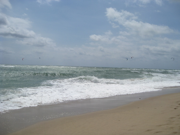 wind-and-waves-in-florda