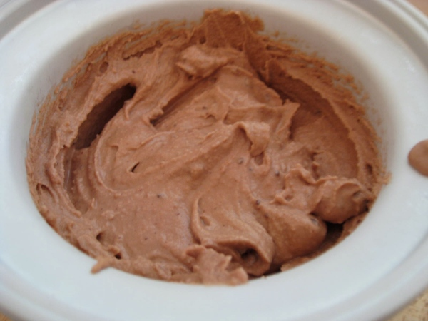 Chocolate Hazelnut Ice Cream